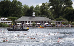 London Triathlon Stock Photography