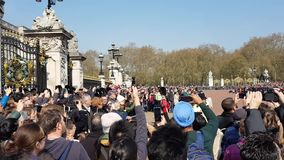 Changing of the guard ceremony on Buckingham palace in London stock footage