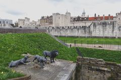 Wire animal sculptures of three Barbary lions by Kendra Haste installed at the Tower of London, England. London, UK - April 2018: Wire animal sculptures of three royalty free stock image