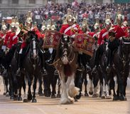 Drum horse with rider, with Household Cavalry behind, taking part in the Trooping the Colour military ceremony, London UK. London UK. Beautiful drum horse with stock photography