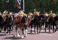 Drum horse with rider, with Household Cavalry behind, taking part in the Trooping the Colour military ceremony, London UK royalty free stock images