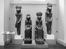 Goddess Sekhmet at British Museum in London black and white Stock Image