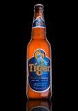 LONDON UK, DECEMBER 15, 2016: Flaskan av Tiger Beer på svart bakgrund som lanseras först i 1932, är bryggat öl för Singapore ` s  Arkivfoton