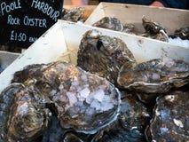 LONDON/UK - 24 FEBRUARI: Oesters voor Verkoop in Stadsmarkt binnen Stock Afbeelding