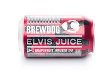 LONDON UK - JANUARI 02, 2018: Aluminium can av Brewdog Elvis Juice öl, från det Brewdog bryggeriet på vit Royaltyfri Foto