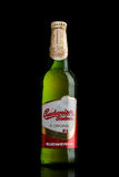 LONDON,UK - MARCH 30, 2017: Bottle of Budweiser Budvar beer on black, one of the highest selling beers in the Czech Republic. LONDON,UK - MARCH 30, 2017 royalty free stock photography