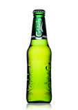 LONDON, UK - MAY 29, 2017: Bottle Of Carlsberg beer on white. Danish brewing company founded in 1847. Royalty Free Stock Photography