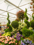 LONDON, UK - MAY 25, 2017: RHS Chelsea Flower Show 2017. Visitors observing mixed plants displays Stock Photo