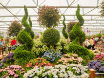 LONDON, UK - MAY 25, 2017: RHS Chelsea Flower Show 2017. Visitors observing mixed plants displays Royalty Free Stock Photography