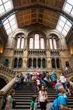 LONDON, UK, Natural History museum - building and details Royalty Free Stock Images