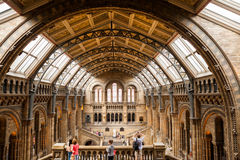 LONDON, UK, Natural History museum Stock Photo