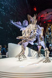 LONDON, UK, Natural History museum - The most complete stegosaurus Royalty Free Stock Photos