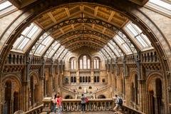 LONDON, UK, naturhistoriamuseum - byggnad och detaljer Arkivfoto