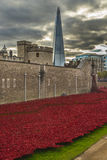 London, UK - October 18, 2014: Art installation 'Blood Swept Lan Stock Image