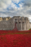 London, UK - October 18, 2014: Art installation 'Blood Swept Lan Stock Photos