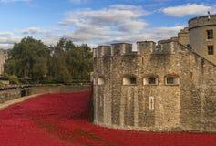 London, UK - October 18, 2014: Art installation 'Blood Swept Lan Royalty Free Stock Images