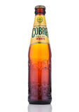 LONDON, UK - OCTOBER 06, 2016: Cobra Premium beer on a white background, Cobra 5.0% Premium Beer is brewed to an authentic Indian Stock Image