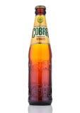 LONDON UK - OKTOBER 06, 2016: Högvärdigt öl för kobra på en vit bakgrund, kobra 5 0% bryggas högvärdigt öl till en autentisk indi Fotografering för Bildbyråer