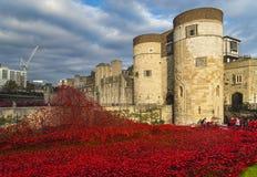 London UK - Oktober 18, 2014: Sopat LAN för konstinstallation 'blod Arkivbild