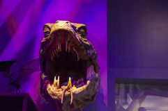 London UK; Oktober 23, 2013; Warner Bros Studios London turnerar, med uppsättningarna och det original- materialet av de Harry P arkivbilder