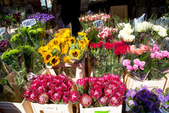 London, United Kingdom - April 17, 2015: Columbia Road Flower Sunday market. Street traders are selling their stock Royalty Free Stock Photography