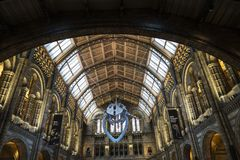 Natural History Museum in London, England, United Kingdom stock images
