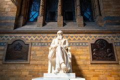 Statue of Sir Charles Darwin at The Natural History Museum in London. Sir Charles Darwin English naturalist, geologist and biologist his statue situated at the royalty free stock photo