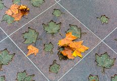 LONDON, VEREINIGTES KÖNIGREICH - 25. NOVEMBER 2018: Bronze- und natürliche Ahornblätter im Kanada-Denkmal in Green Park stockfoto