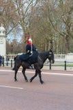LONDON, VEREINIGTES KÖNIGREICH - 25. NOVEMBER 2018: Schutz berühmter London-Königin Pferde stockfoto