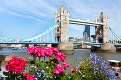 London view in summer Royalty Free Stock Images