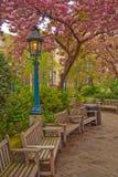 london wiosna Zdjęcie Stock