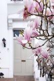 Londra in fioritura Fotografia Stock