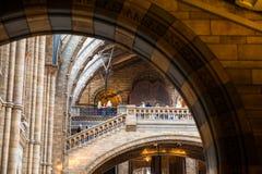 LONDRA, il Regno Unito, museo di storia naturale - costruzione e dettagli Fotografia Stock