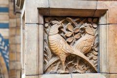 LONDRA, il Regno Unito, museo di storia naturale - costruzione e dettagli Immagini Stock