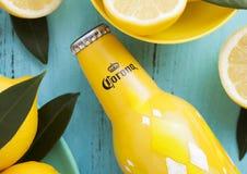 LONDRA, REGNO UNITO - 27 APRILE 2018: Bottiglia d'acciaio di Corona Extra Beer su fondo di legno blu con i limoni freschi fotografia stock