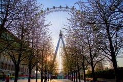LONDRA, Regno Unito - il 13 aprile: L'occhio di Londra Fotografia Stock Libera da Diritti