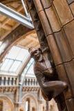 LONDRA, Regno Unito, museo di storia naturale Fotografie Stock Libere da Diritti