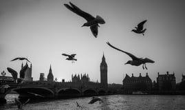 Londres, Big Ben B Foto de archivo libre de regalías