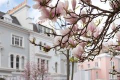 Londres en fleur Image libre de droits