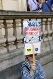 Londres, Inglaterra 23 de junio de 2018 Manifestación del voto del ` s de la gente fotografía de archivo libre de regalías