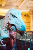 LONDRES, R-U - 27 JUILLET 2015 : Musée d'histoire naturelle - détails du Dinosaurus Photo libre de droits