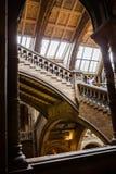 LONDRES, R-U, musée d'histoire naturelle Photographie stock libre de droits
