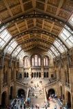LONDRES, R-U, musée d'histoire naturelle Images stock