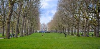 LONDRES, Reino Unido - April16, 2016: - Británico que refrigeram acima no ne verde do parque Fotografia de Stock
