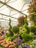 LONDRES, REINO UNIDO - 25 DE MAIO DE 2017: RHS Chelsea Flower Show 2017 Foto de Stock