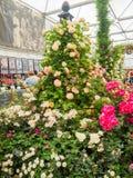 LONDRES, REINO UNIDO - 25 DE MAIO DE 2017: RHS Chelsea Flower Show 2017 Fotografia de Stock Royalty Free