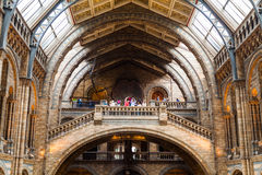 LONDRES, Reino Unido, museo de la historia natural Foto de archivo