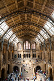 LONDRES, Reino Unido, museo de la historia natural Imagenes de archivo