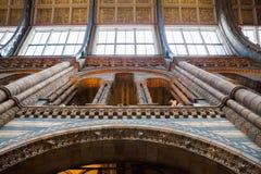 LONDRES, Reino Unido, museo de la historia natural - edificio y detalles Foto de archivo libre de regalías