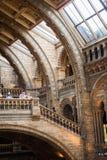 LONDRES, Reino Unido, museo de la historia natural - edificio y detalles Fotografía de archivo